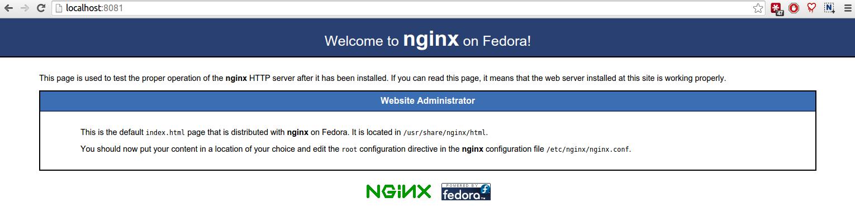 nginx_centos_8081