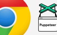 googlepuppeteer